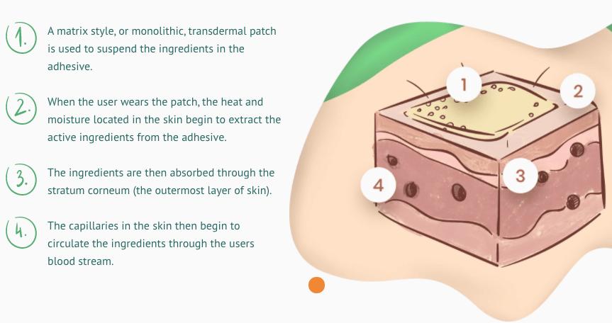 Transdermal Vitamin Patch